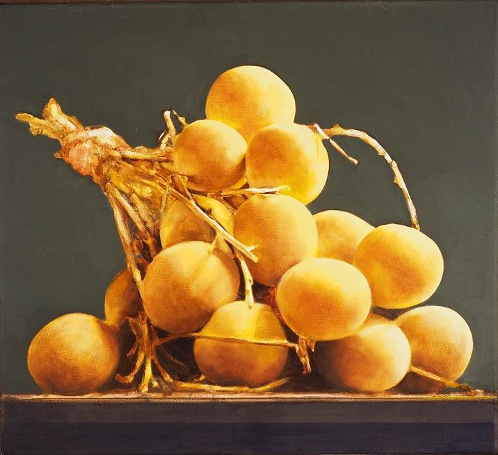 Carlo Golin, Longan Study, oil on canvas. 2016, 46x50cm SOLD