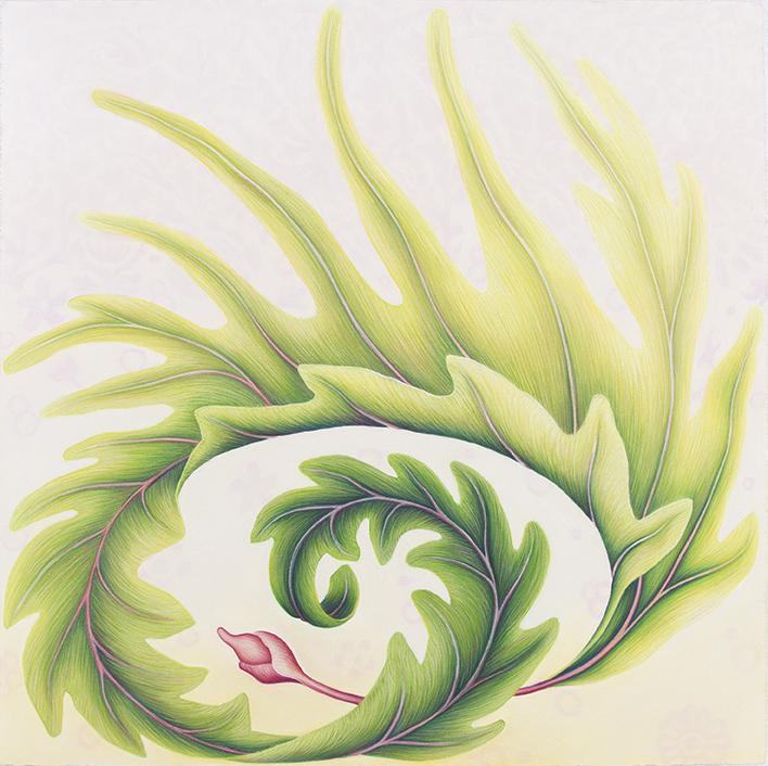 Filomena Coppola, Spiralling - Green, 2017. pastel on paper, 80 x 80cm, framed $4800