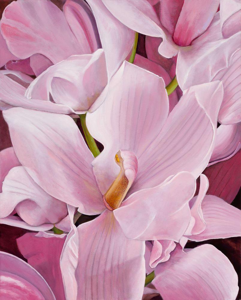 Jill Kempson, Bloom in Pink, oil on canvas, 75x55 cm $3500