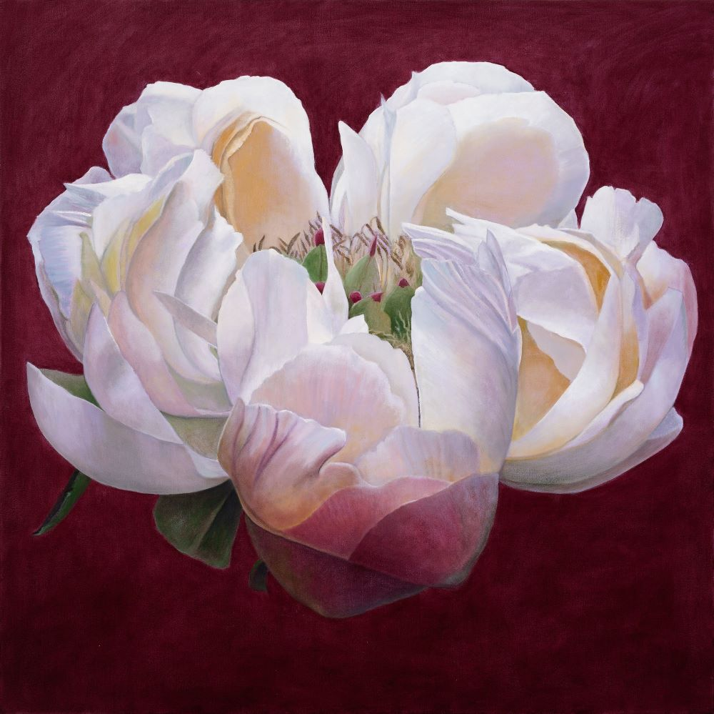 Jill Kempson, Bloom in White, 2020, Oil on Canvas, 100x100 cms $5500