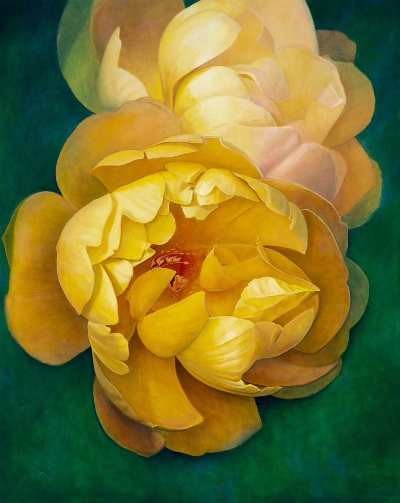 Jill Kempson, Blooms in Yellow , 2021, Oil on Canvas, 150x120 cm $8500